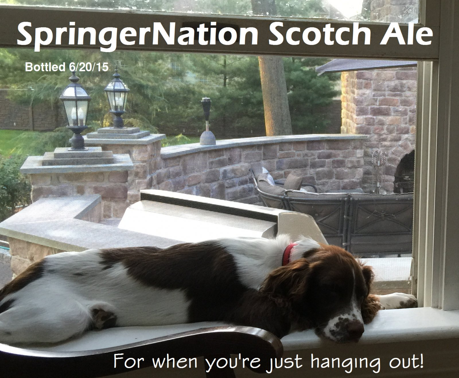 Click image for larger version  Name:SpringerNation Scotch Ale Label3.jpg Views:42 Size:380.8 KB ID:101503