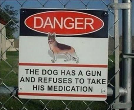 Click image for larger version  Name:Dog Gun.jpg Views:67 Size:29.2 KB ID:124542