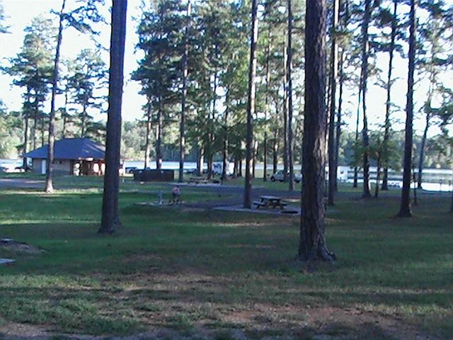 Click image for larger version  Name:Davis Lake Mississippi USDA05.jpg Views:58 Size:211.5 KB ID:14989
