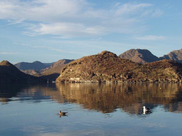 Click image for larger version  Name:2009 Baja 149.jpg Views:39 Size:48.7 KB ID:182
