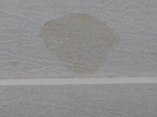 Name:   Close up Shower Stain.jpg Views: 324 Size:  16.3 KB