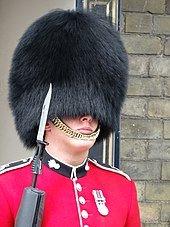 Name:  170px-Horse_Guard.JPG.jpeg Views: 29 Size:  13.5 KB