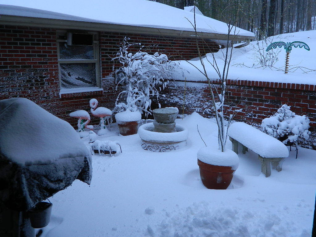 Click image for larger version  Name:snow courtyard Dec2012.JPG Views:119 Size:202.8 KB ID:31060