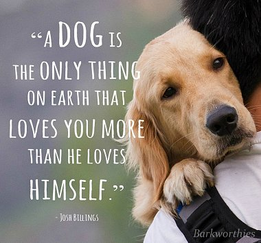 Click image for larger version  Name:dog-love.jpg Views:3 Size:519.7 KB ID:314380