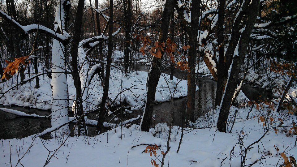 Click image for larger version  Name:McCann River.jpg Views:23 Size:194.7 KB ID:32984