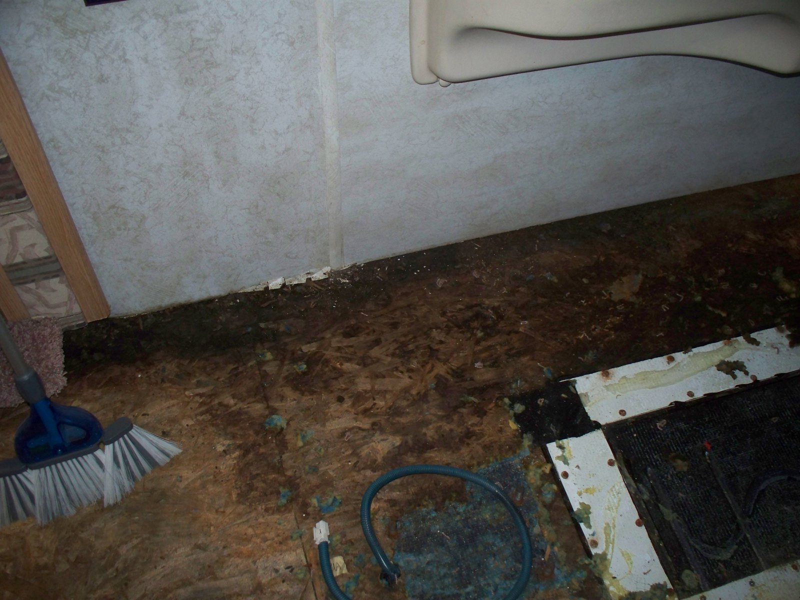Click image for larger version  Name:#011 Dam, Dry Rot, now what.jpg Views:123 Size:274.4 KB ID:33323