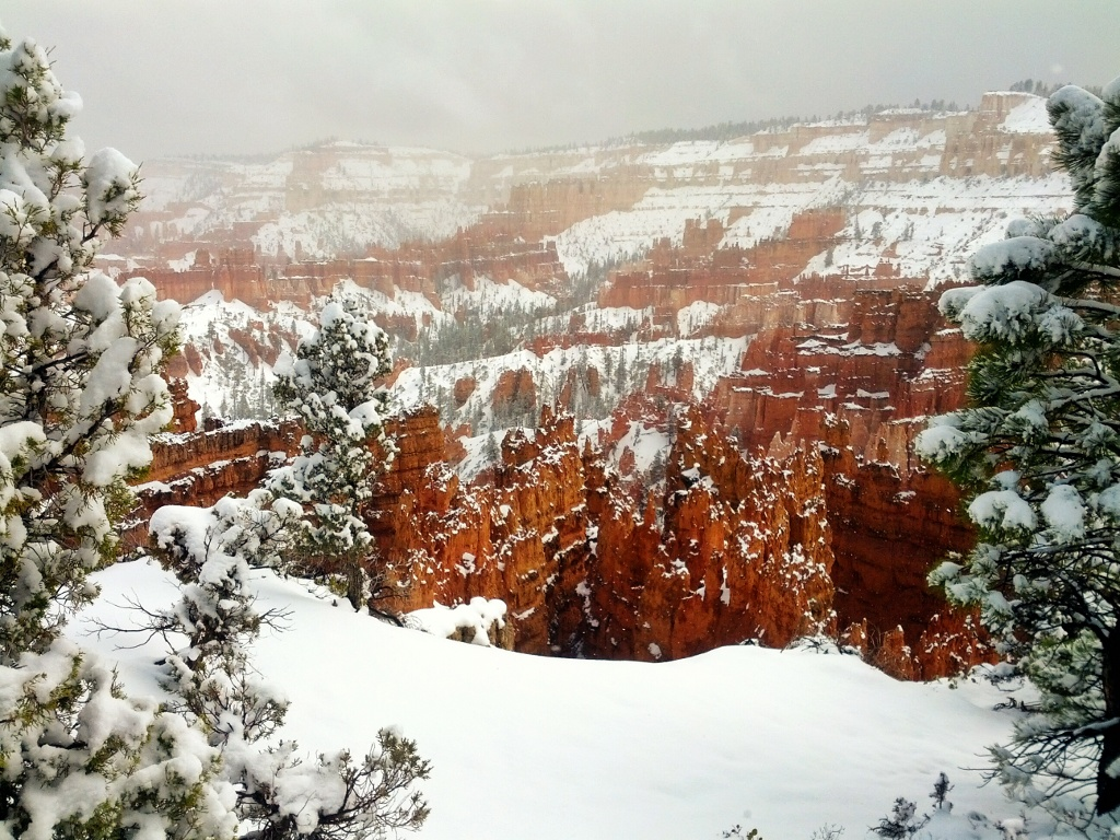 Click image for larger version  Name:bryce_snow.jpg Views:48 Size:383.7 KB ID:37023