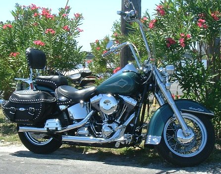 Click image for larger version  Name:Softail1.jpg Views:465 Size:71.9 KB ID:49525