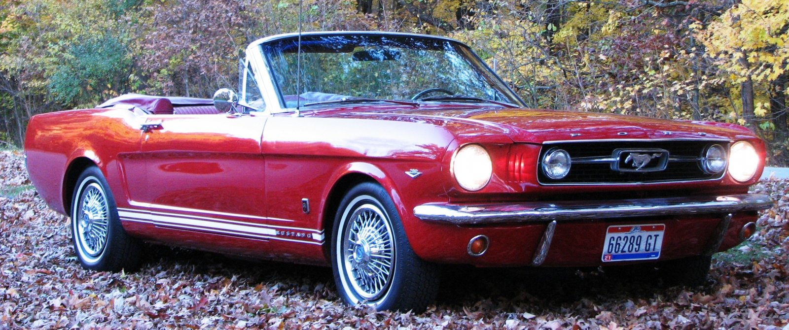 Click image for larger version  Name:MustangGT.jpg Views:158 Size:328.3 KB ID:59760