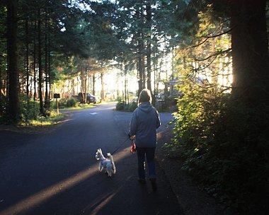 Click image for larger version  Name:Oregon State Park.jpg Views:37 Size:109.1 KB ID:74310