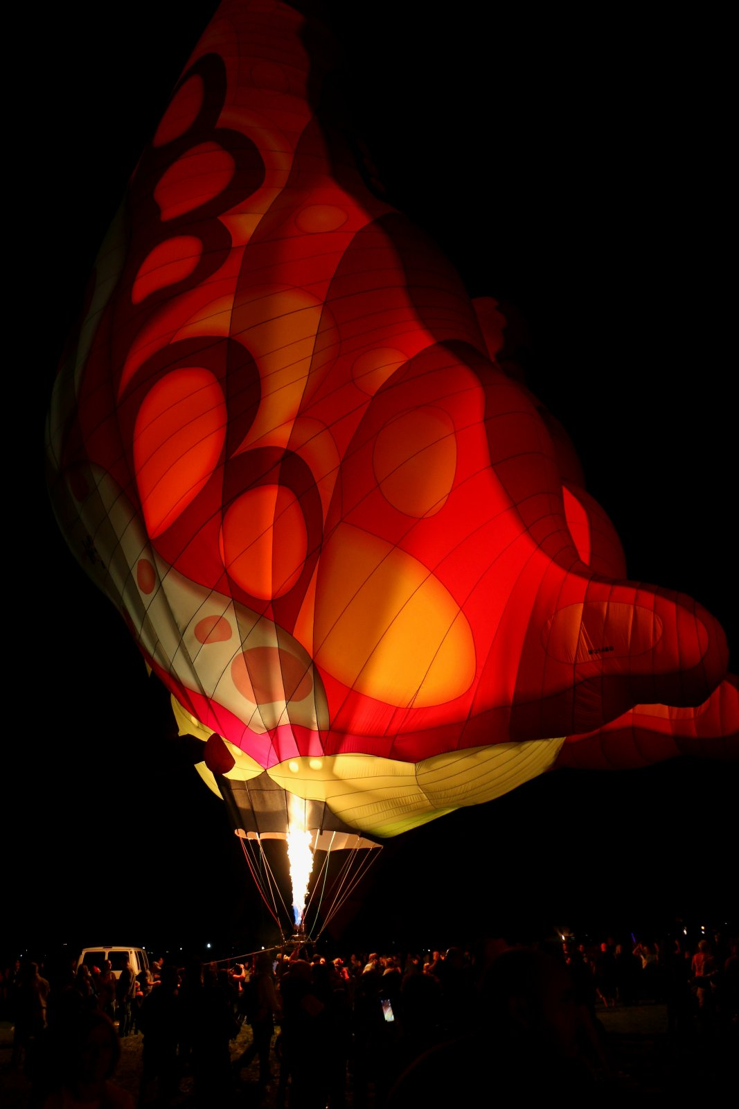 Click image for larger version  Name:Balloon rally (36).jpg Views:86 Size:126.1 KB ID:75876