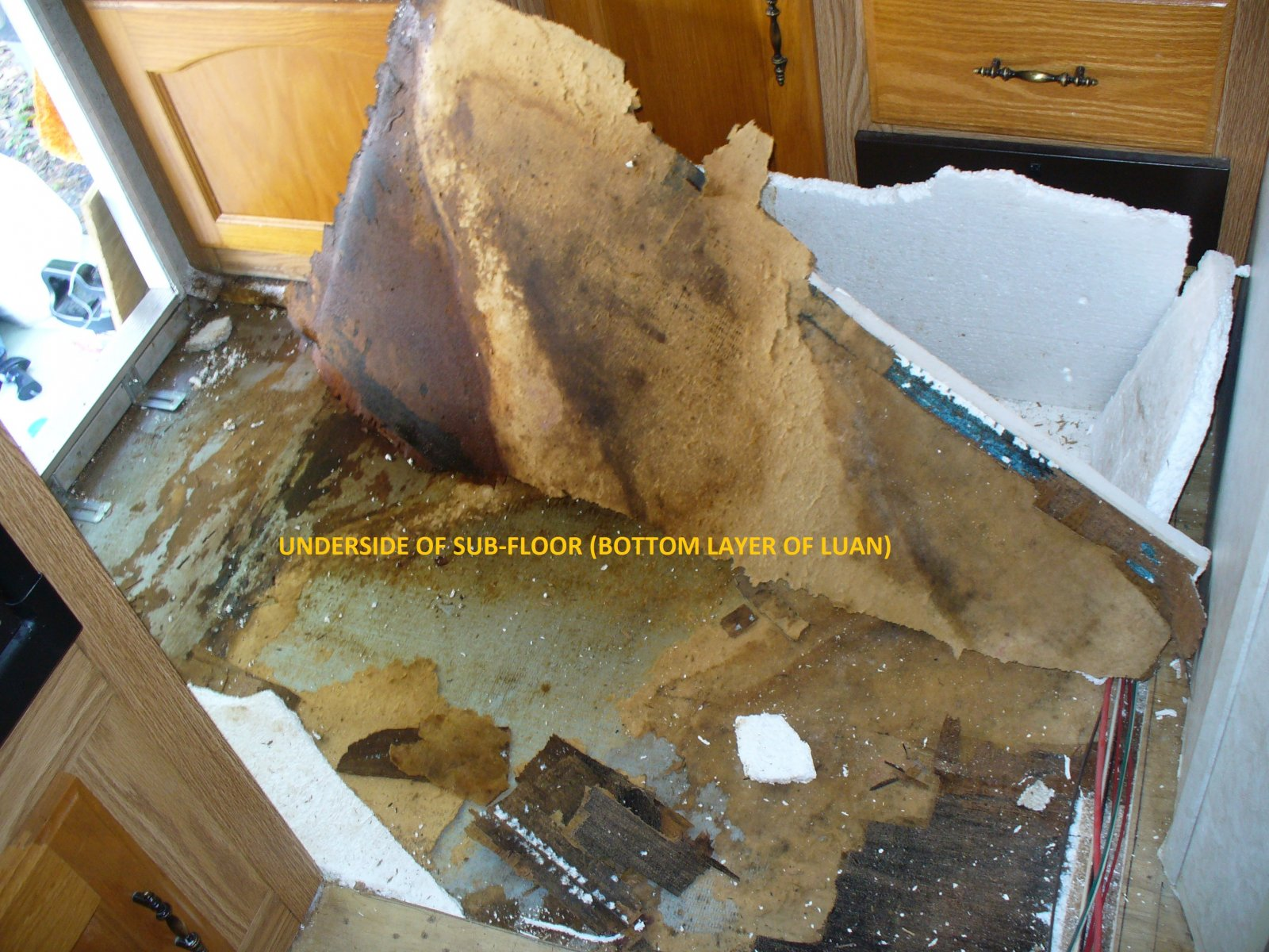 Click image for larger version  Name:Subfloor removal kitchen 006.jpg Views:59 Size:356.7 KB ID:88537