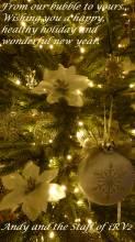 Christmas_iRV2_2020.JPG