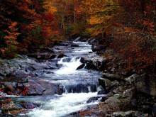 Fall-in-the-Smoky-Mountains-1024x768.jpg