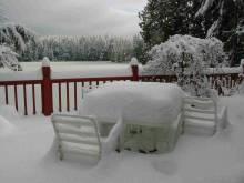 Snow_Dec_08.jpg