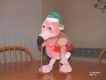flamingo_skier2.jpg